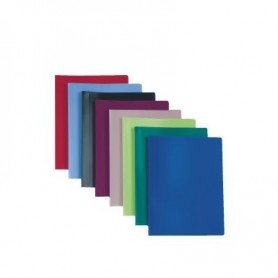 CARPETA 30 FUNDAS FLEXIBLE 60 VISTAS VIQUEL